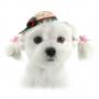 52HAT01B dog2