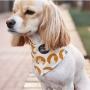 COSCA02 dog9