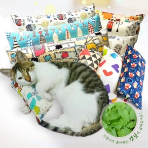 COTOYCAT