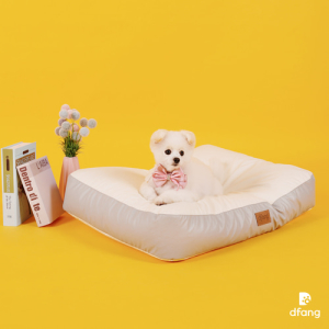 DFANBED01