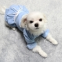 24OL01 dog2